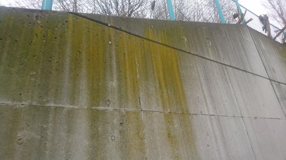 コンクリート表面の変色メカニズムと清掃方法